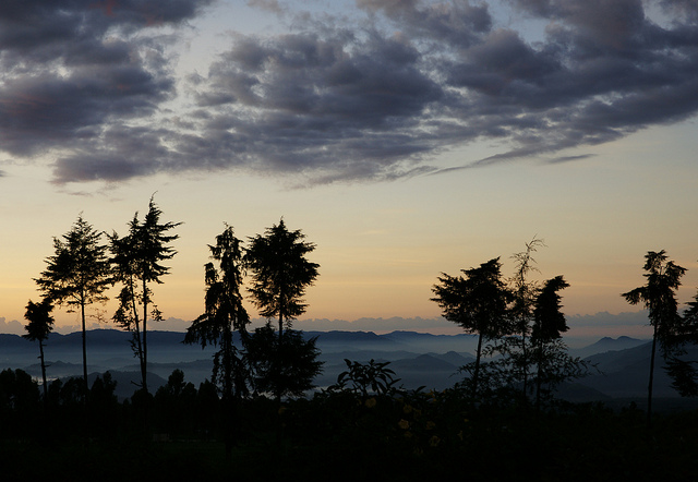 hills in Rwanda